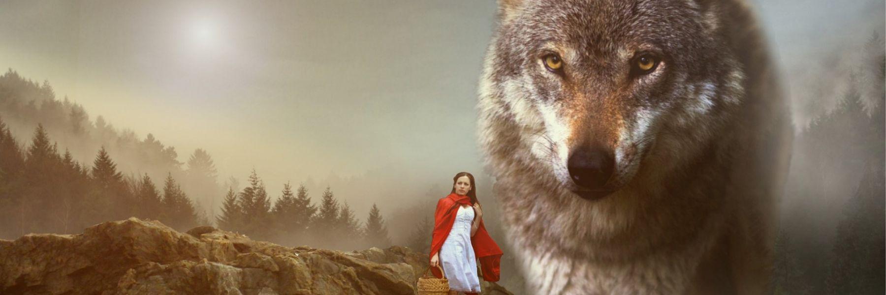 Rotkäuferlein und der böse Fachbereichswolf