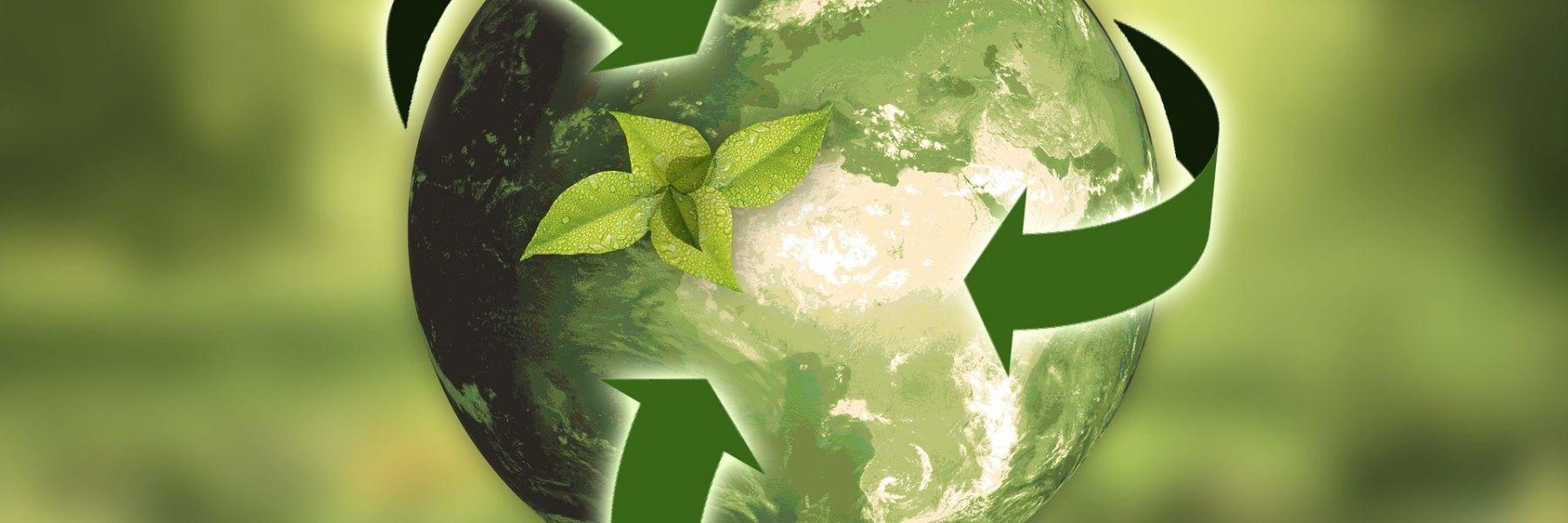Nachhaltigkeit im Einkauf – macht das jetzt schon Sinn?